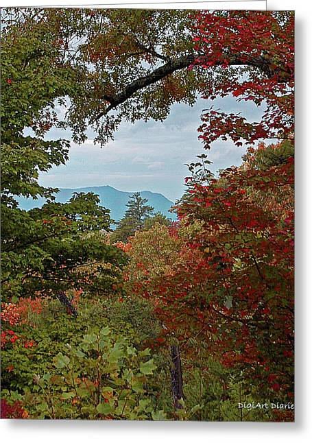 Reds Gold Greens White Blues Greeting Cards - Peeking at the Smokies Greeting Card by DigiArt Diaries by Vicky B Fuller