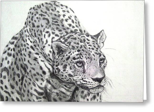 Wild Life Drawings Greeting Cards - Peering leopard  II Greeting Card by Nancy Rucker