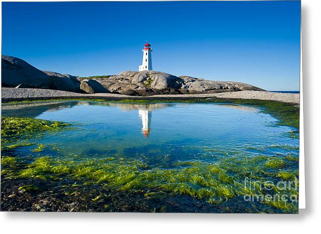 Best Sellers -  - Alga Greeting Cards - Peggys Cove lighthouse Greeting Card by David Nunuk