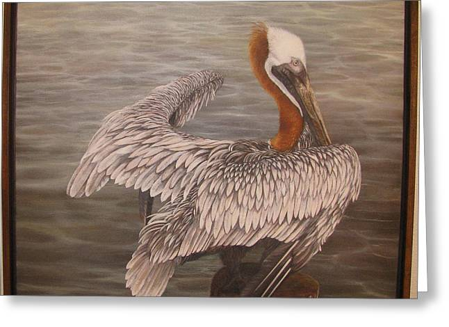 Pelican 3 Brown Greeting Card by Judy Merrell