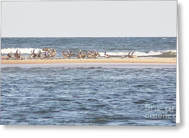 Sea View Greeting Cards - Pelican Bar Greeting Card by Chuck  Hicks