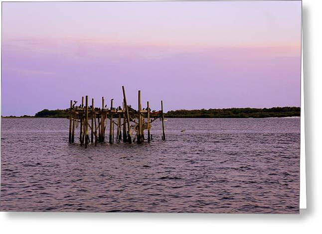Cedar Key Greeting Cards - Pelican Bar Greeting Card by Laurie Perry