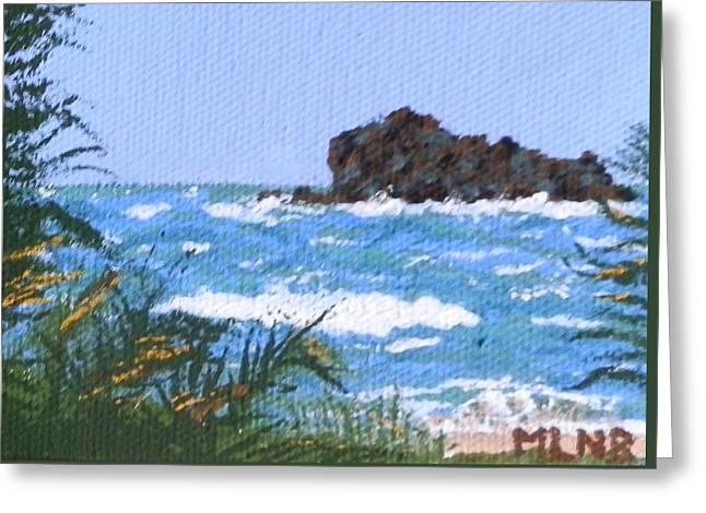 St Margaret Paintings Greeting Cards - Pelican Key in rough waters Greeting Card by Margaret Brooks