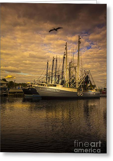 Fishing Boat Reflection Greeting Cards - Pelican Over Mattie Fay Greeting Card by Marvin Spates
