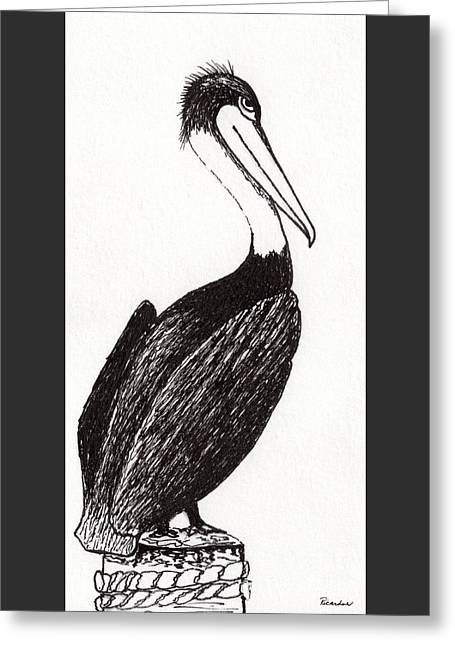 Pelican Paradise Portrait In Ink C2l Greeting Card by Ricardos Creations