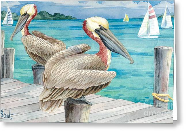 Pelican Sails Greeting Card by Paul Brent