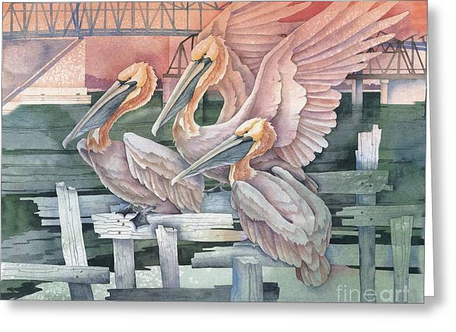 Pelicans At Audobon Island Greeting Card by Paul Brent