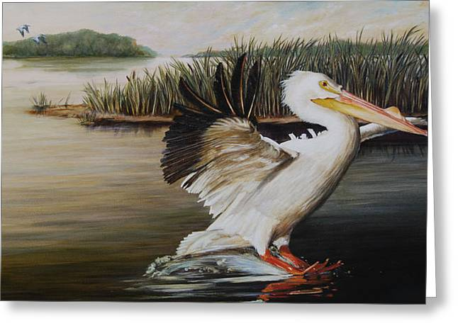 Landing Paintings Greeting Cards - Pelicans at the Confluence Greeting Card by Rob Dreyer AFC