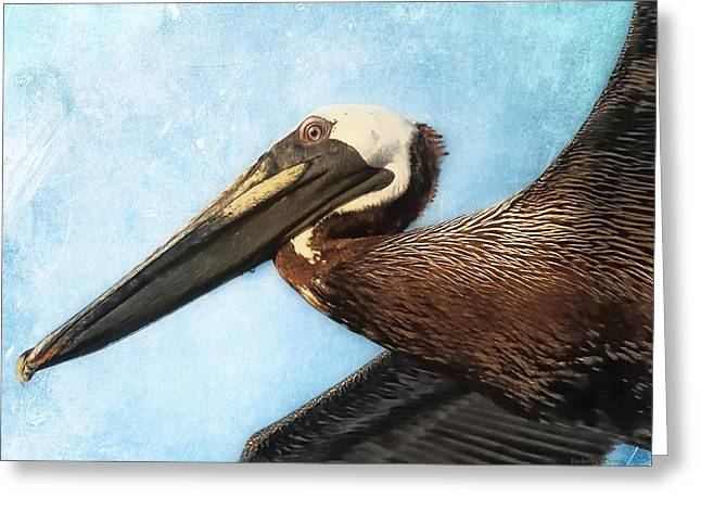 Saltlife Greeting Cards - Peligance Greeting Card by Barbara Chichester