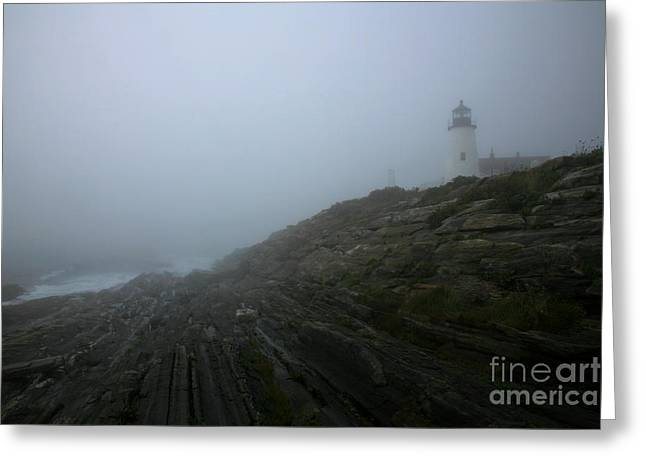 Pemaquid Lighthouse Greeting Cards - Pemaquid and the Sea Greeting Card by Timothy Johnson