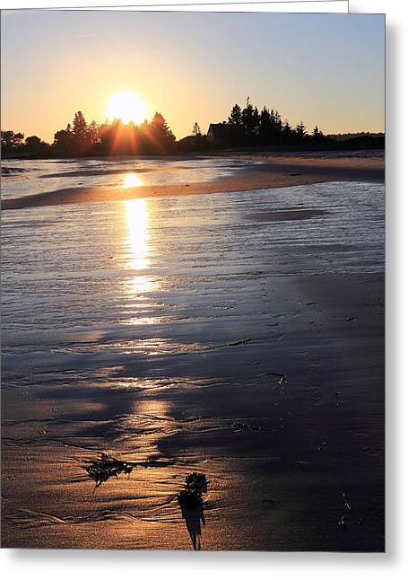 Maine Landscape Greeting Cards - Pemaquid Sunset Greeting Card by Laurie Breton