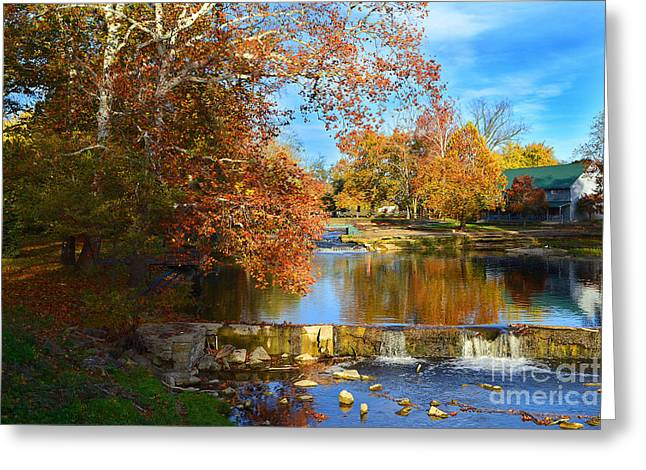 Pendleton Falls Park In The Fall Greeting Card by Amy Lucid