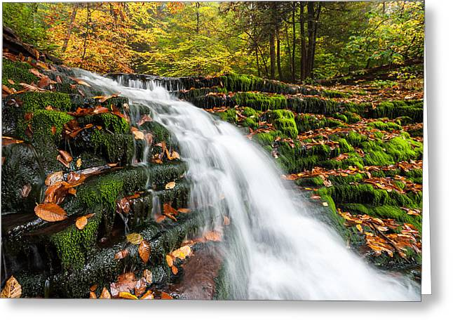 Fishing Creek Greeting Cards - Pennsylvania Autumn Ricketts Glen State Park Waterfall Greeting Card by Mark VanDyke