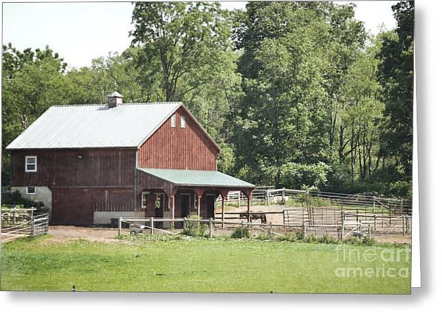 Print Photographs Greeting Cards - Pennsylvania Horse Farm Greeting Card by Andrea Hazel Ihlefeld