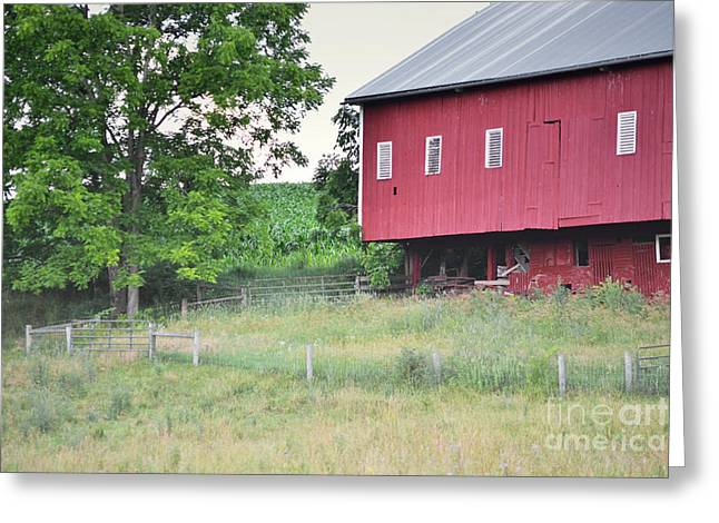 Amish Farms Greeting Cards - Pennsylvania Red Barn Dreamy Field Greeting Card by Andrea Hazel Ihlefeld