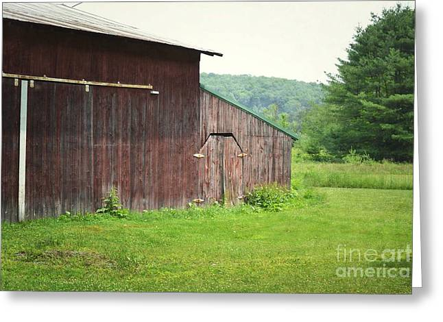 Pennsylvania Barns Greeting Cards - Pennsylvania Rustic Barn Summer Greeting Card by Andrea Hazel Ihlefeld