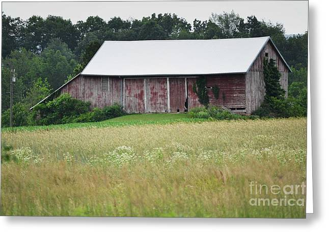 Red Barn Prints Greeting Cards - Pennsylvania Shabby Chic Barn Greeting Card by Andrea Hazel Ihlefeld