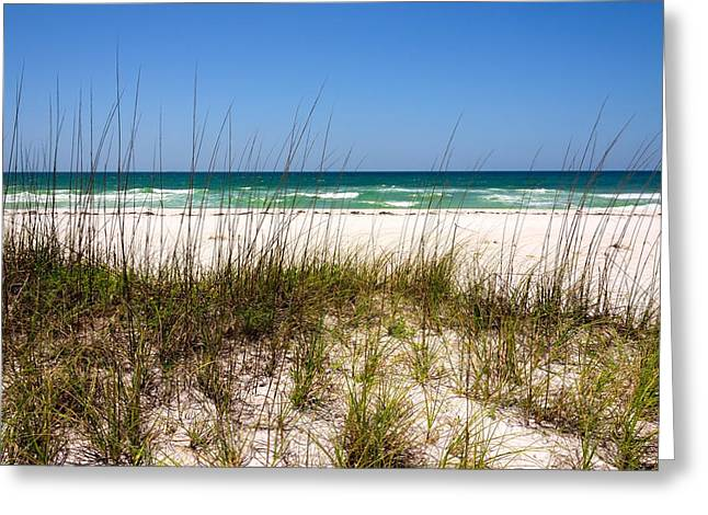 Beach Photography Greeting Cards - Pensacola Beach 1 - Pensacola Florida Greeting Card by Brian Harig