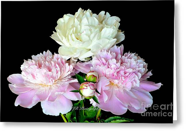 Spring Bulbs Greeting Cards - Peony Bouquet Greeting Card by Jeannie Rhode Photography