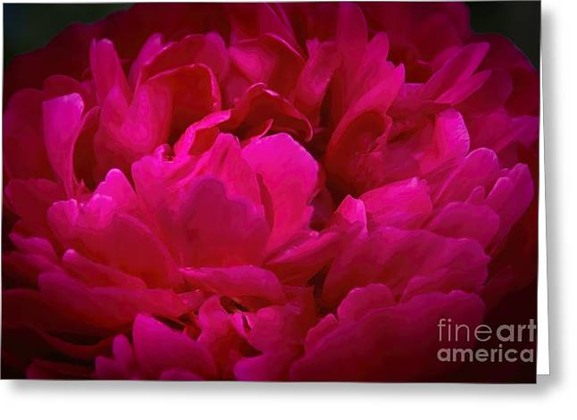 Flower Design Greeting Cards - Peony Spring Petals Greeting Card by Janice Rae Pariza