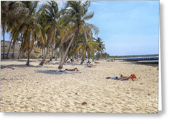 Ocean Shore Greeting Cards - People on the beach in Cuba Greeting Card by Patricia Hofmeester