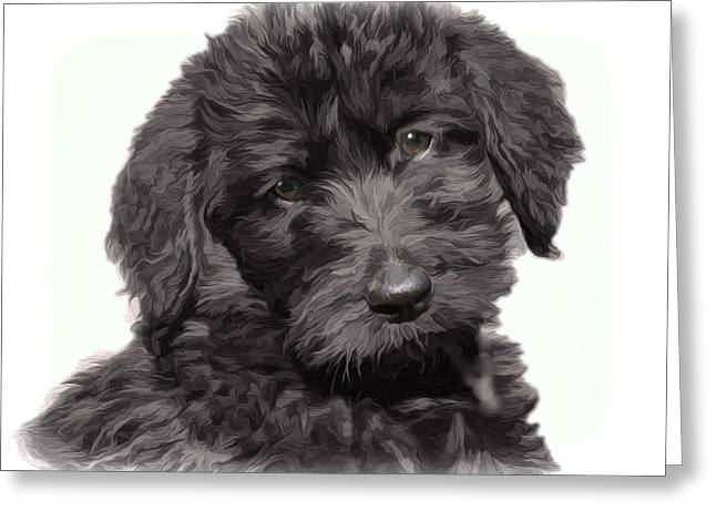 Puppies Digital Greeting Cards - Pepper Labradoodle Greeting Card by Carol  Nelson-Williams