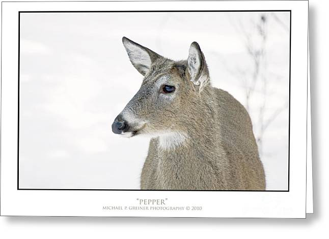 Amimal Greeting Cards - Pepper Greeting Card by Michael Greiner