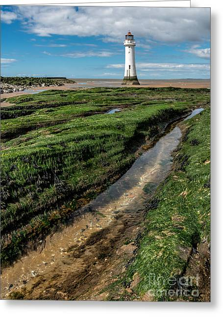 Moss Greeting Cards - Perch Rock Lighthouse Greeting Card by Adrian Evans