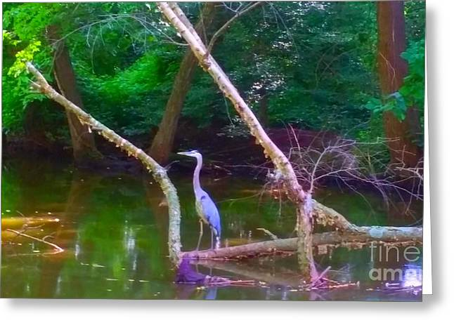 Stream Digital Art Greeting Cards - Perched Crain Greeting Card by PrettTea Art Gallery  By Teaya Simms