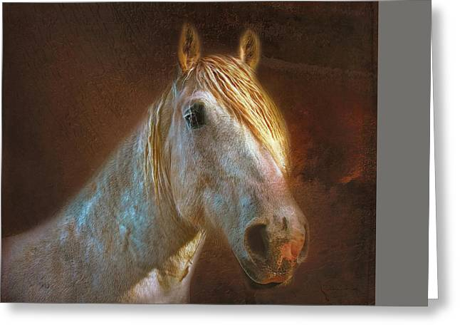 Grey Clouds Greeting Cards - Percheron  Greeting Card by Bellesouth Studio