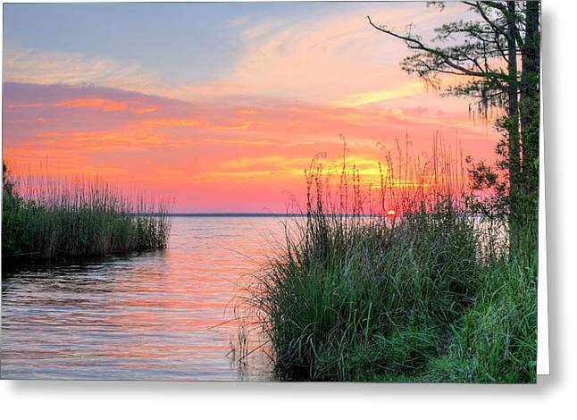 James Findley Greeting Cards - Perdido Bay Greeting Card by JC Findley