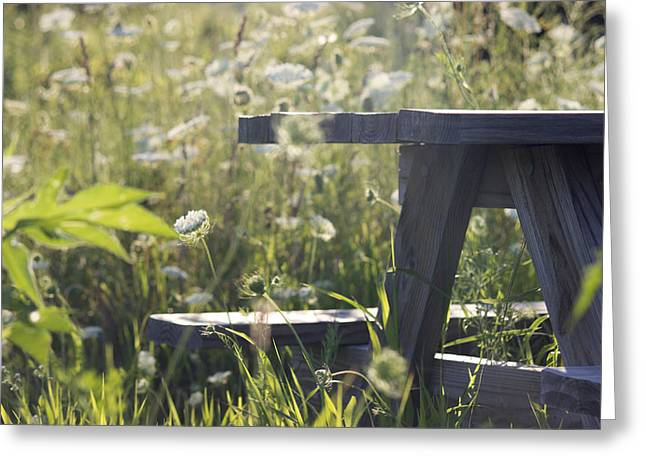 Table Greeting Cards - Perfect Bench Greeting Card by Jesse Valadez