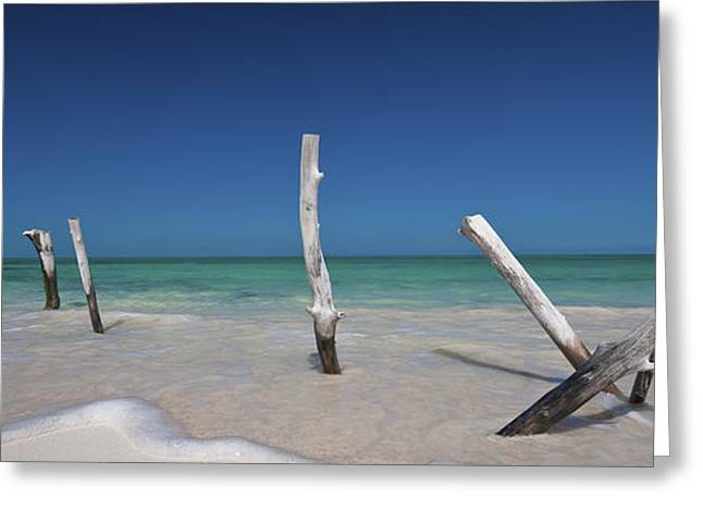 Cozumel Greeting Cards - Perfect Greeting Card by Ryan Heffron