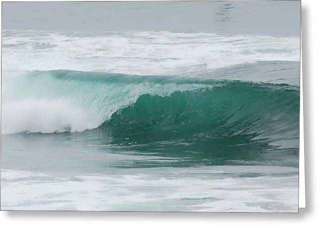 Perfect Wave Greeting Card by Donna Blackhall