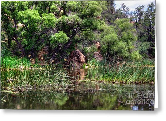 Prescott Greeting Cards - Perfection of Natures Beauty Greeting Card by Thomas  Todd