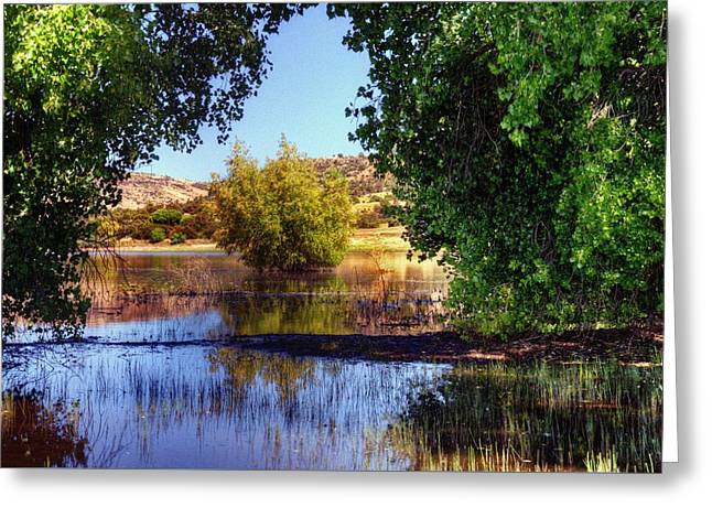 Prescott Greeting Cards - Natures Curtain Call Greeting Card by Thomas  Todd