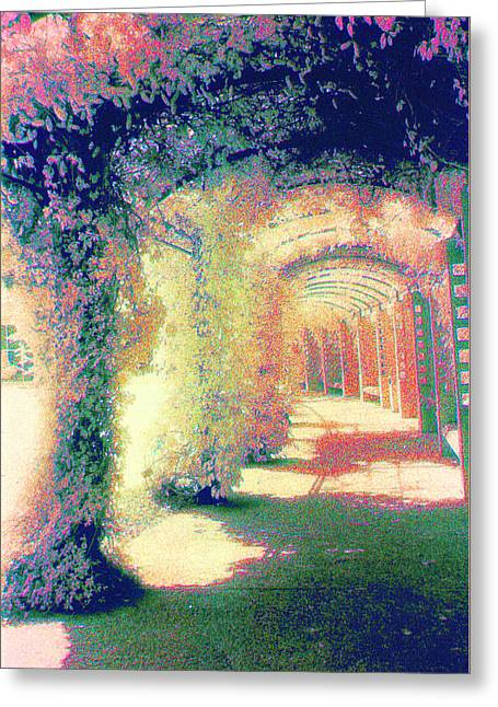 Tuscan Sunset Greeting Cards - Pergola Greeting Card by Kristy Alcala