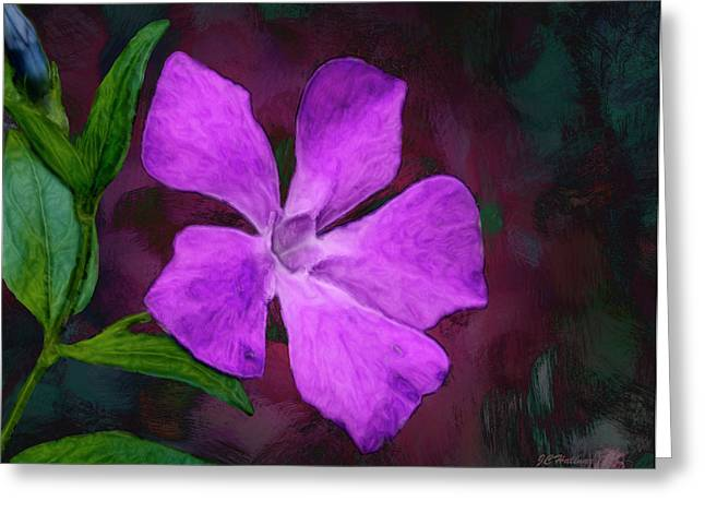 Halinar Greeting Cards - Periwinkle Greeting Card by Joe Halinar