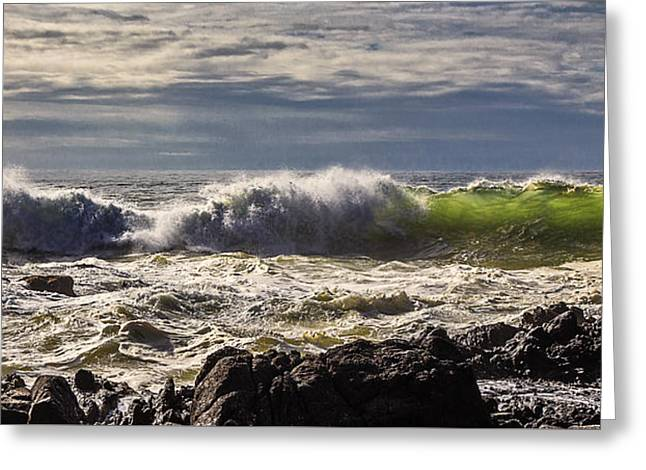 Ocean Landscape Greeting Cards - Perpetua Waves D9351 Greeting Card by Wes and Dotty Weber