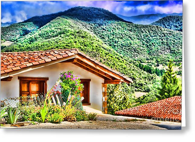 Mountain Valley Greeting Cards - Perrozo-155A0976 Greeting Card by Diana Sainz