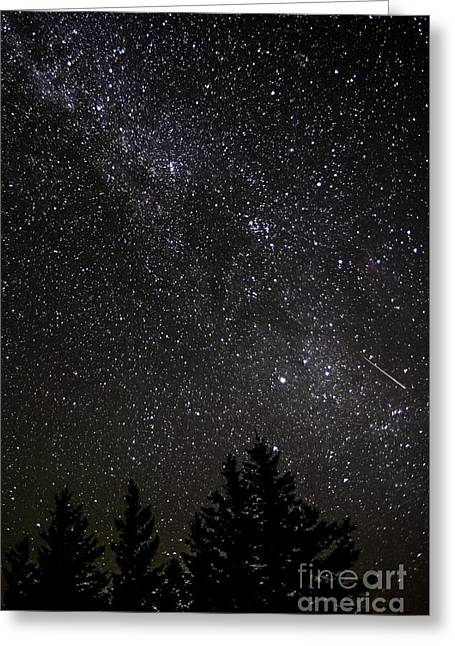 Perseid Meteor Greeting Cards - Perseid Meteor and Milky Way Greeting Card by Thomas R Fletcher