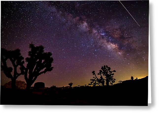 Meteor Greeting Cards - Perseid Meteor over Joshua Tree Greeting Card by Peter Tellone