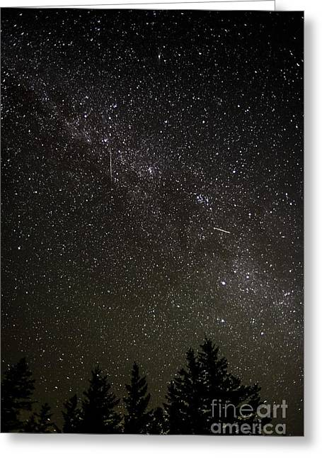 Perseid Meteors Greeting Card by Thomas R Fletcher