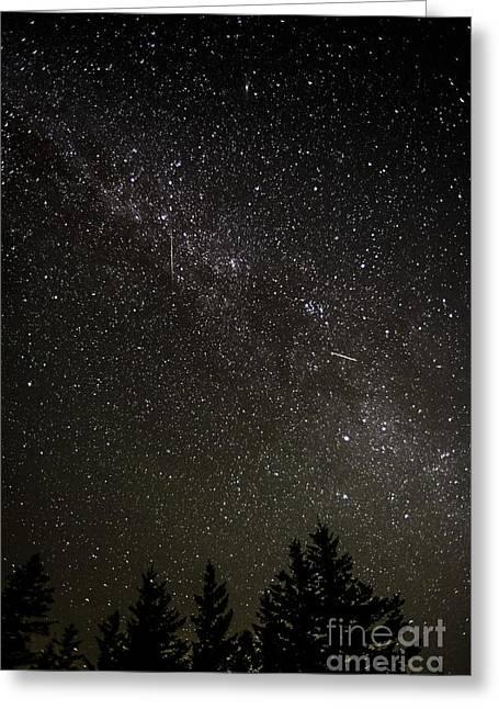 Perseid Meteor Greeting Cards - Perseid Meteors Greeting Card by Thomas R Fletcher