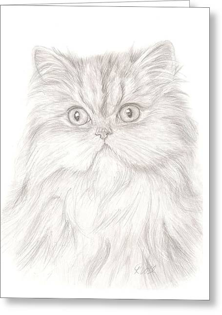 Bengal Drawings Greeting Cards - Persian Cat Greeting Card by Rebecca Vose