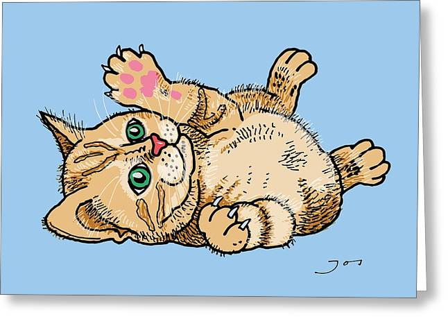 Kitten Prints Greeting Cards - Persian Kitten Greeting Card by Pets Portraits