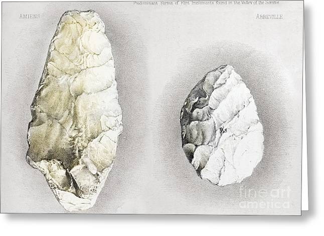 Sommes Greeting Cards - Perthes Handaxes, Abbeville, 1860 Greeting Card by Paul D. Stewart
