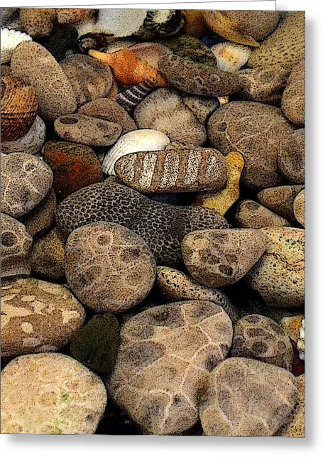 Stones Digital Art Greeting Cards - Petoskey Stones with Shells l Greeting Card by Michelle Calkins
