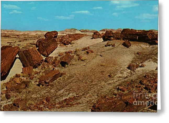 The Petrified Forest Greeting Cards - Petrified Logs  Greeting Card by Ruth  Housley