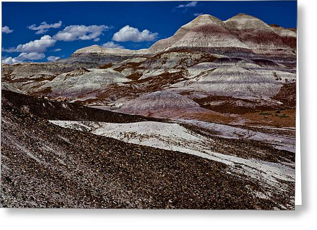 Creative Greeting Cards - Petrified Park Greeting Card by Gary Migues